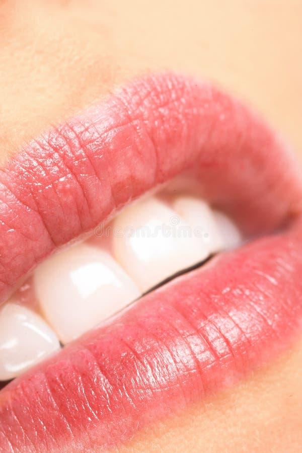 мечтать губы стоковое изображение