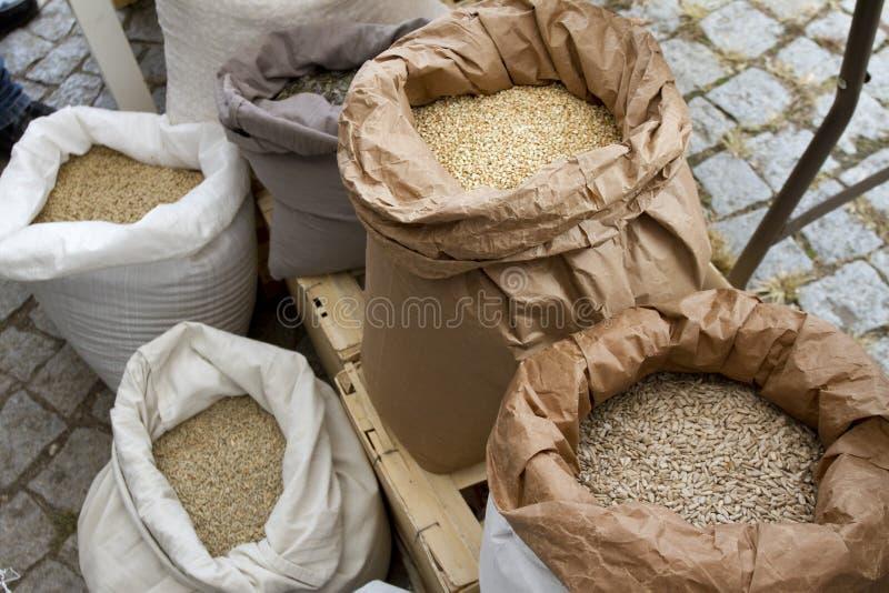 Мешки вполне с нутами, фасолями, гречихой, пшеном, пшеницей, сказали по буквам, чечевицы, зерна пшеницы Einkorn Разнообразие фасо стоковое фото