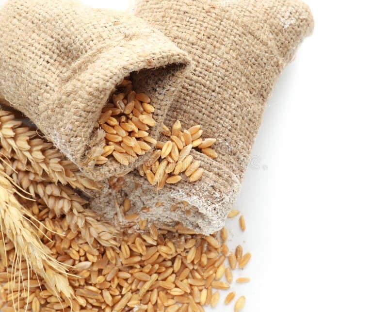 Мешки с зернами, мукой и колосками пшеницы на белой предпосылке стоковое изображение rf