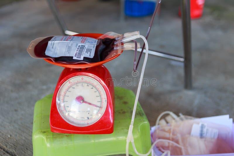 Мешок крови стоковые фото
