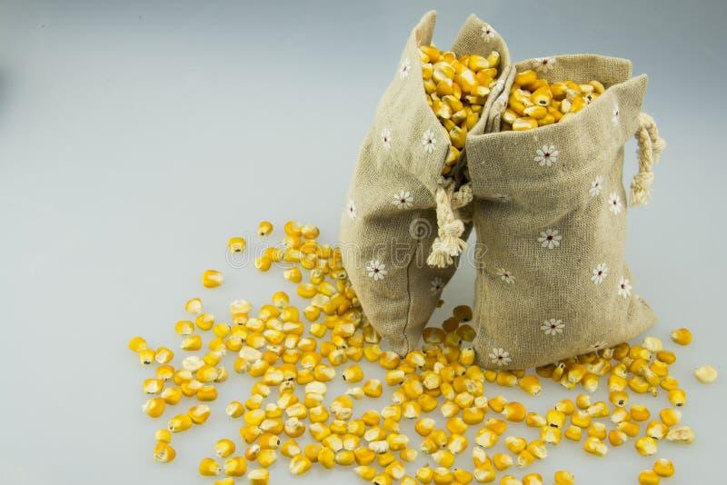 2 мешочка из ткани золотой мозоли стоковое изображение rf