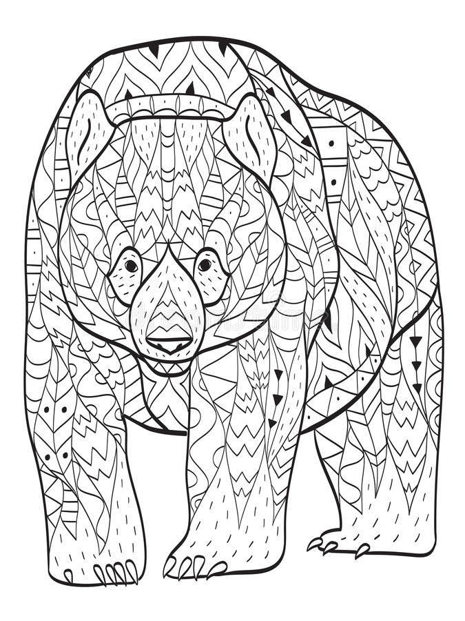 Медведь расцветки вектора для взрослых бесплатная иллюстрация
