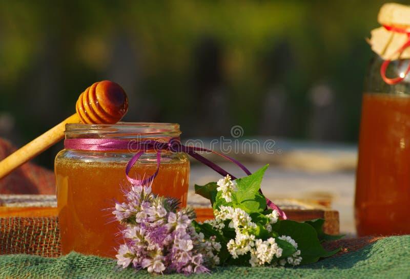 Мед в стекле раздражает и сотах пчелы с травами цветков melliferous стоковое фото