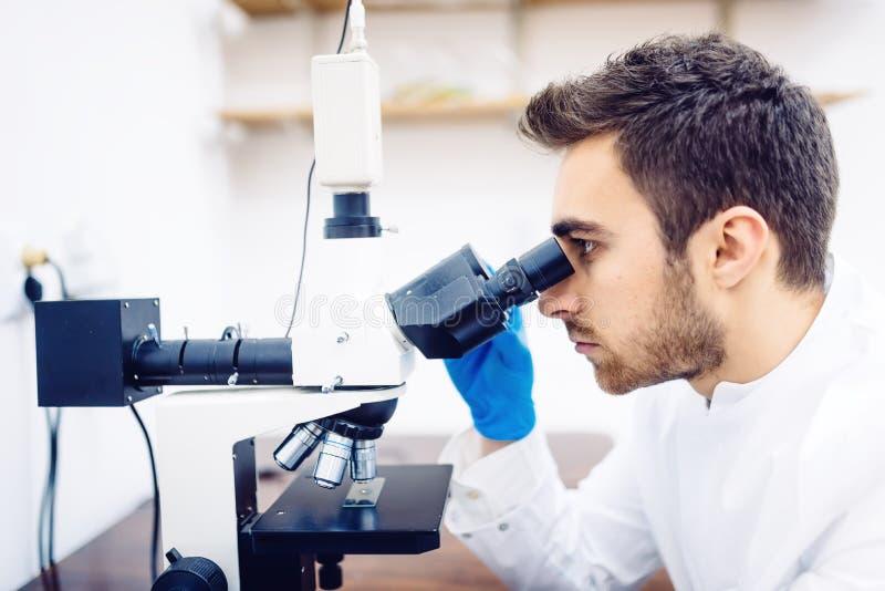 Медицинский ученый с микроскопом, рассматривая образцами и жидкостью в лаборатории стоковая фотография rf