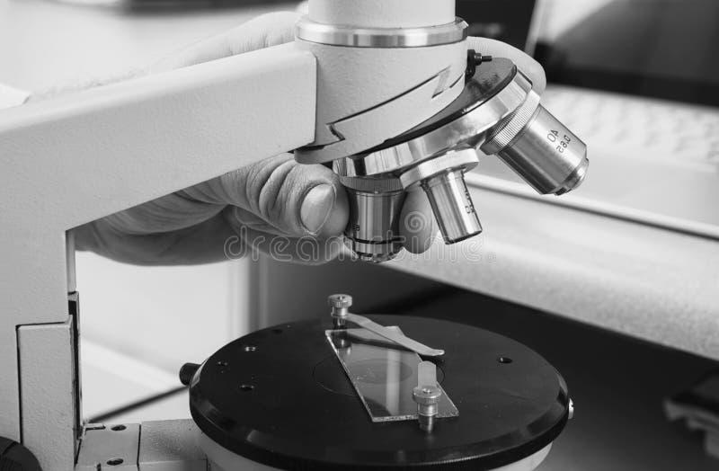 микроскоп лаборатории предпосылки над белизной Предпосылка научных и здравоохранения исследования стоковые изображения