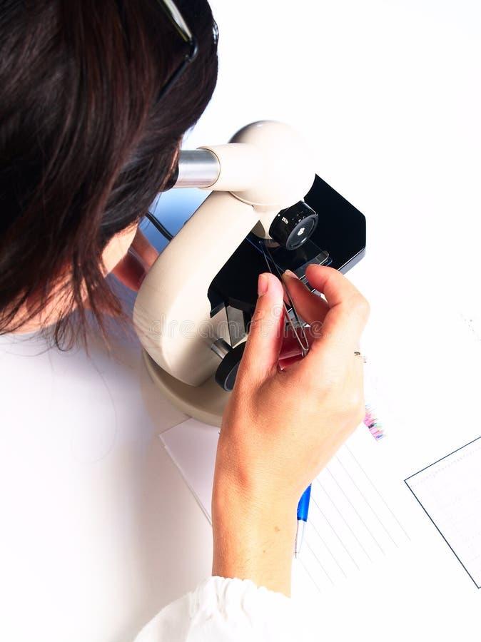 микроскоп доктора стоковые изображения rf