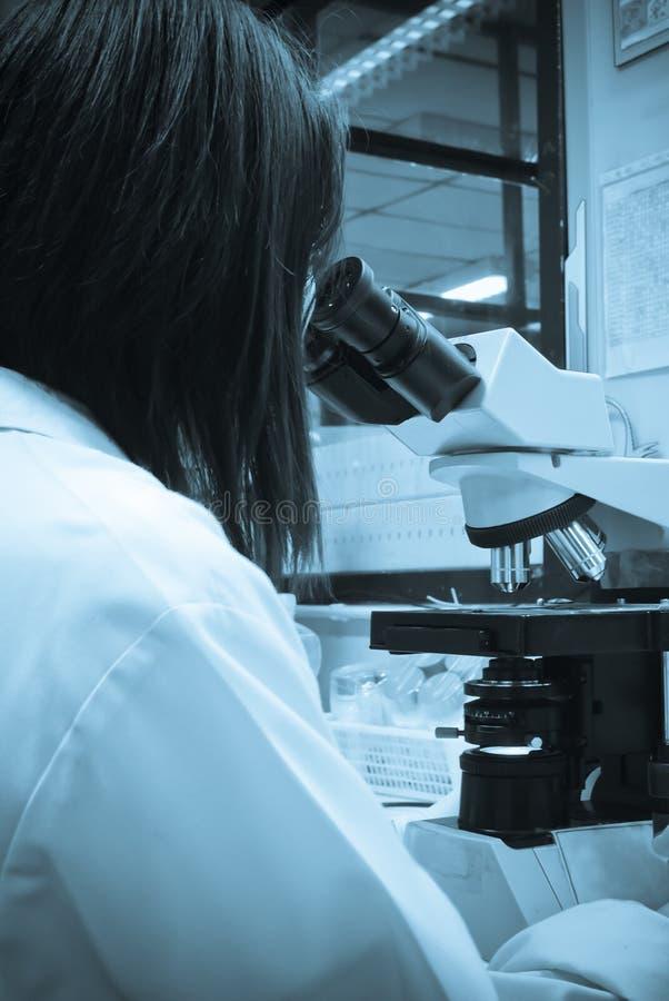 Микроскоп лаборатории стоковое изображение