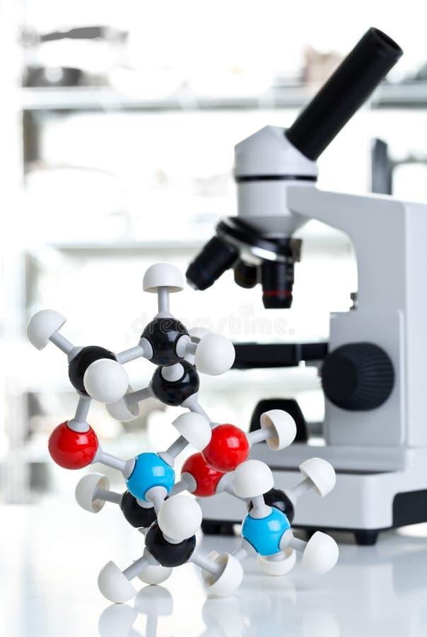 Микроскоп с моделью молекулы в лаборатории стоковые фотографии rf