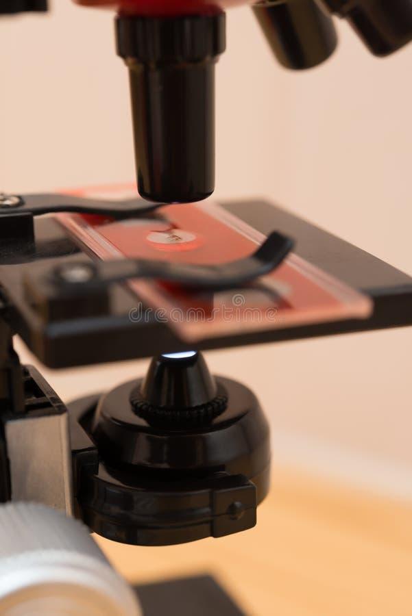 Микроскоп для ребенк для того чтобы исследовать природу стоковая фотография rf