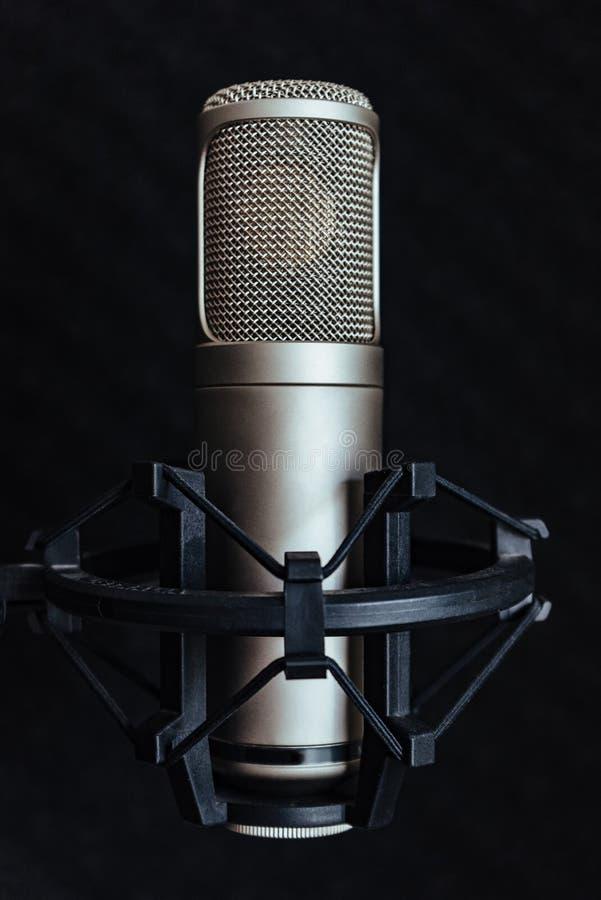 Микрофон конденсатора профессиональный стоковые фото