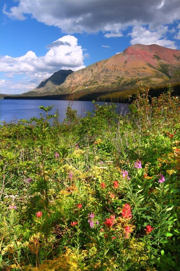 микстура Монтана 2 озера стоковые изображения