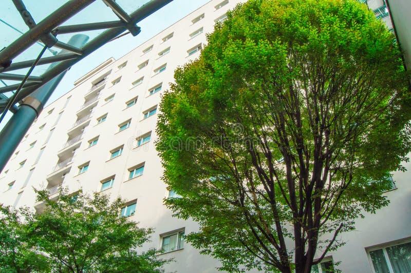Милан, Италия 5-ое октября 2018, фасад современного жилого дома мульти-этажа, около зеленого дерева, взгляд снизу стоковое изображение rf