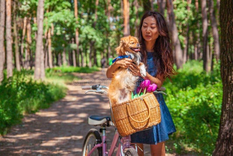 Милая азиатская девушка с меньшей собакой идя в парк Женщина сидя на зеленой траве с собакой - на открытом воздухе в портрете при стоковое изображение