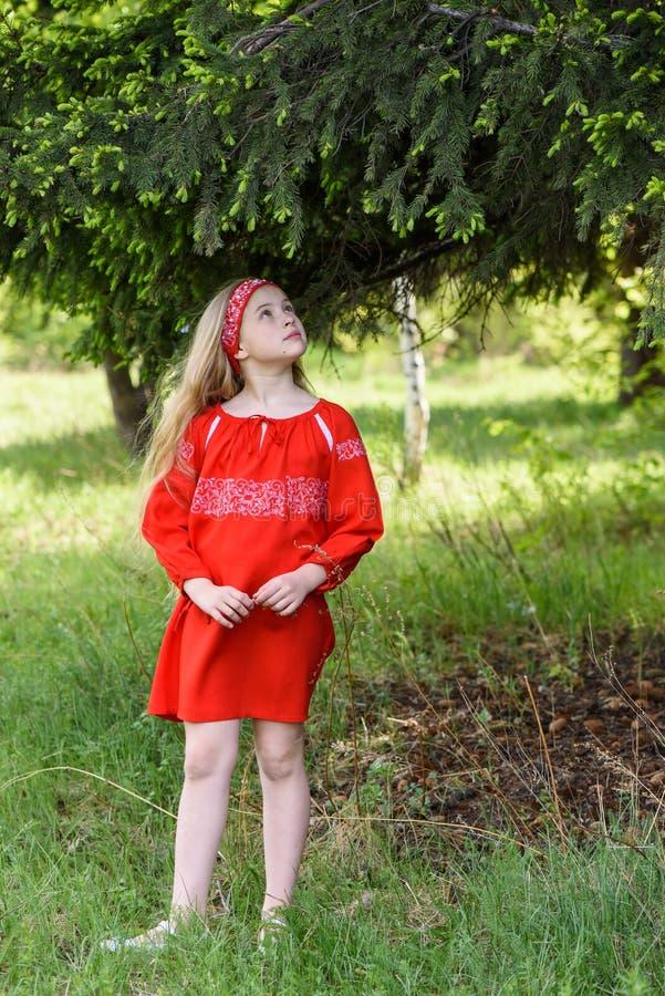 Милая белокурая маленькая девочка представляя в русском традиционном красном платье около ели стоковые фотографии rf