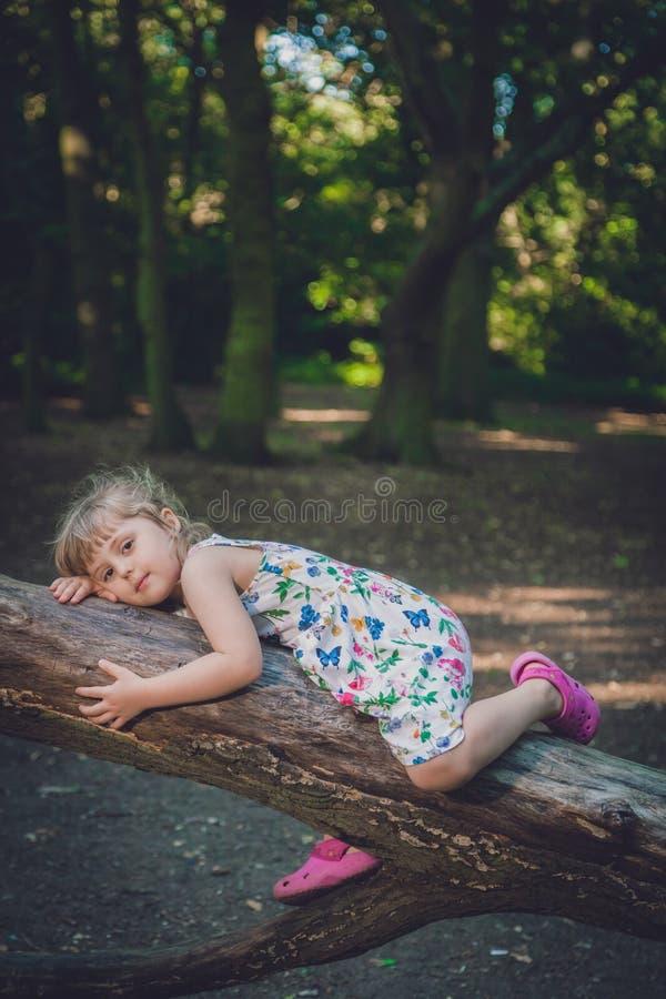 Милая девушка на стволе дерева в лесе стоковое фото rf
