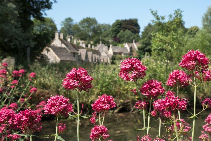 Милая деревня Bibury в Cotswolds Великобритании, с красным валерианом цветет на переднем плане и коттеджи строки Арлингтона на за стоковое изображение