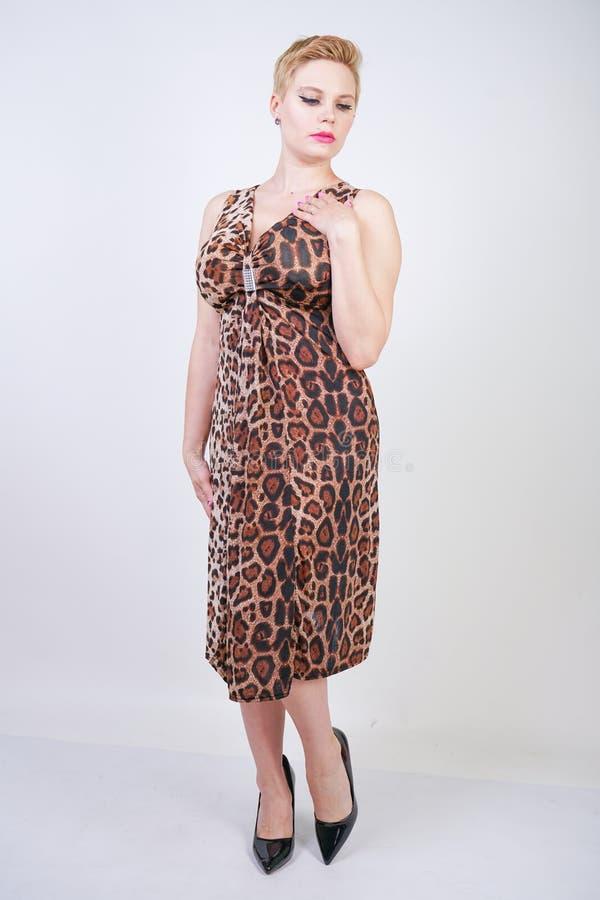 Милая добавочная молодая женщина размера с короткими светлыми волосами нося среднее платье лета длины с животной печатью леопарда стоковое изображение rf