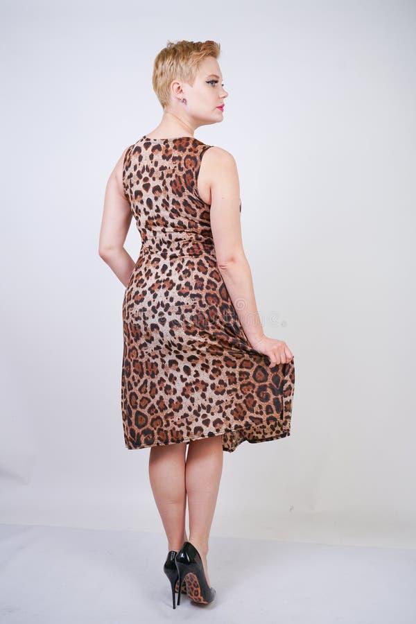 Милая добавочная молодая женщина размера с короткими светлыми волосами нося среднее платье лета длины с животной печатью леопарда стоковые фото