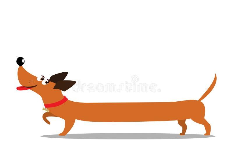 Милая жизнерадостная длинная собака таксы шаржа изолированная на белом backg иллюстрация вектора