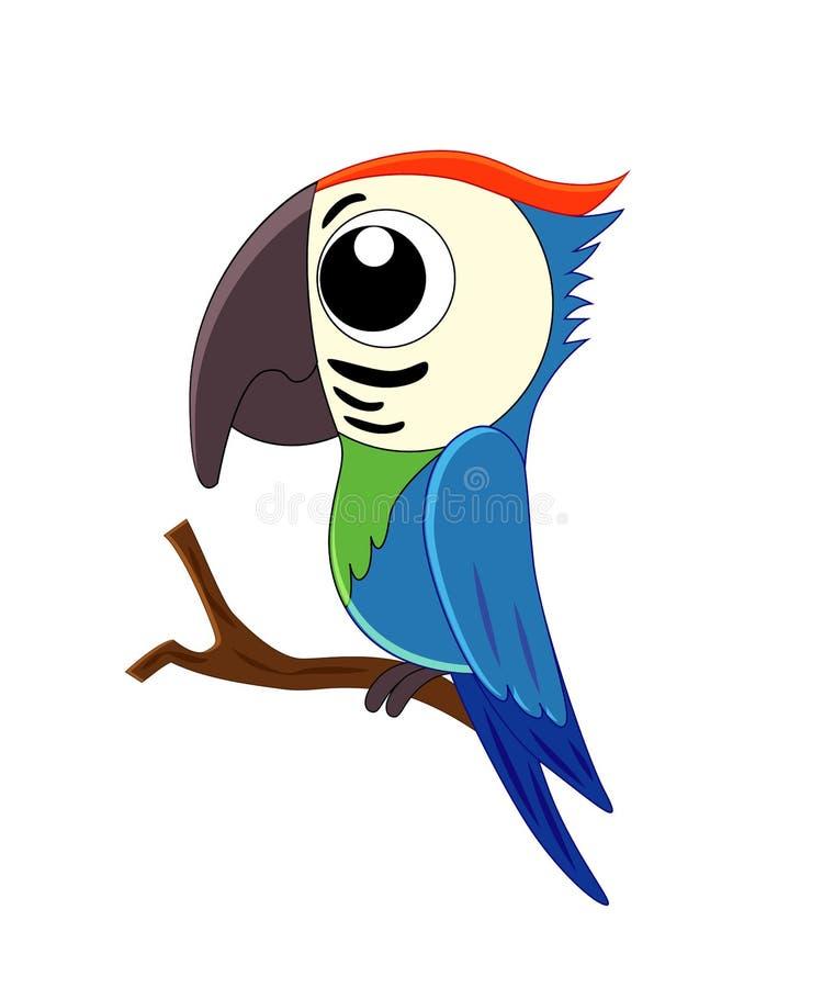 Милая иллюстрация вектора попугая шаржа изолированная на белом backgr иллюстрация вектора