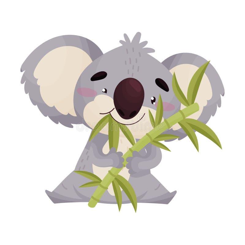 Милая коала ест бамбуковые листья r иллюстрация штока