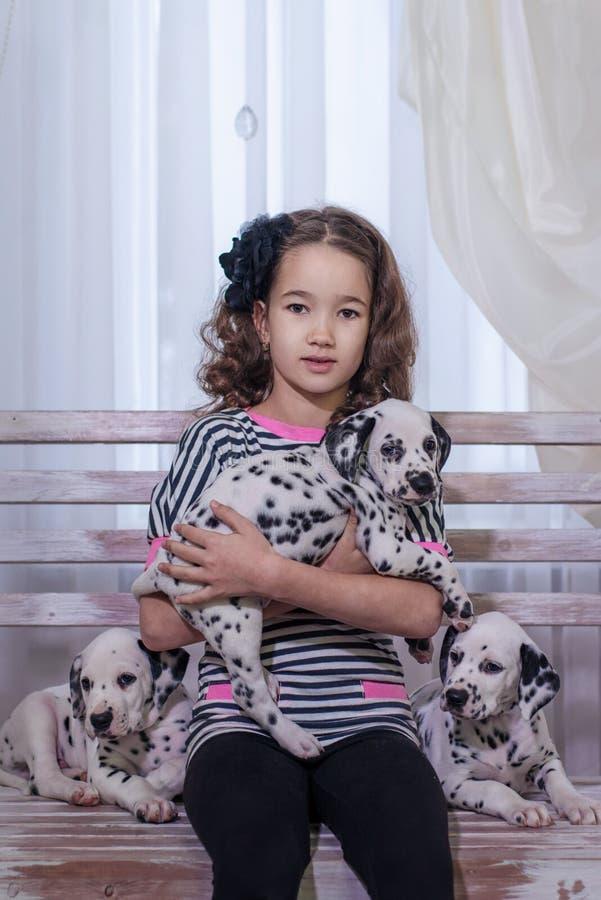 Милая маленькая девочка играя с щенятами Далматина indoors Портрет студии стоковое фото