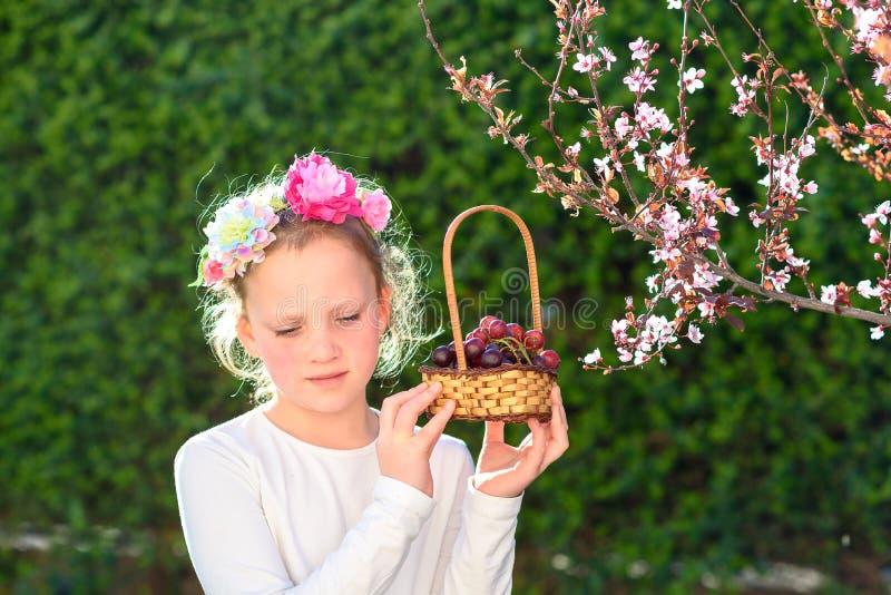 Милая маленькая девочка представляя со свежими фруктами в солнечном саде Маленькая девочка с корзиной виноградин стоковые изображения