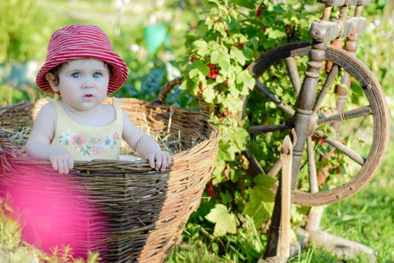 Милая маленькая девочка сидит на сене в корзине в саде стоковая фотография rf