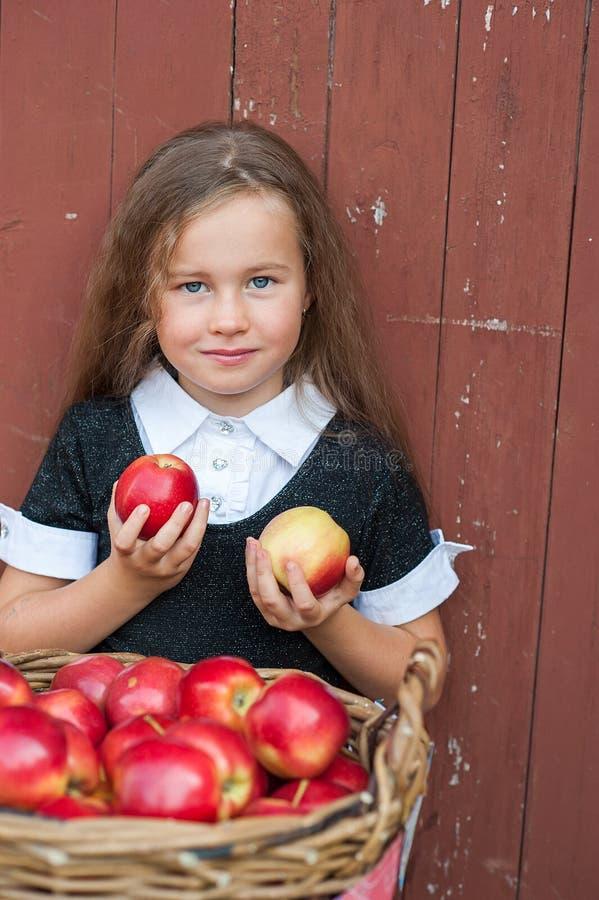 Милая маленькая девочка с корзиной красных яблок стоковые изображения rf