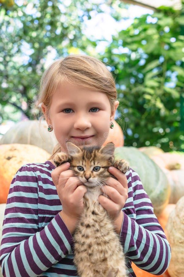 Милая маленькая девочка с котенком стоковая фотография rf