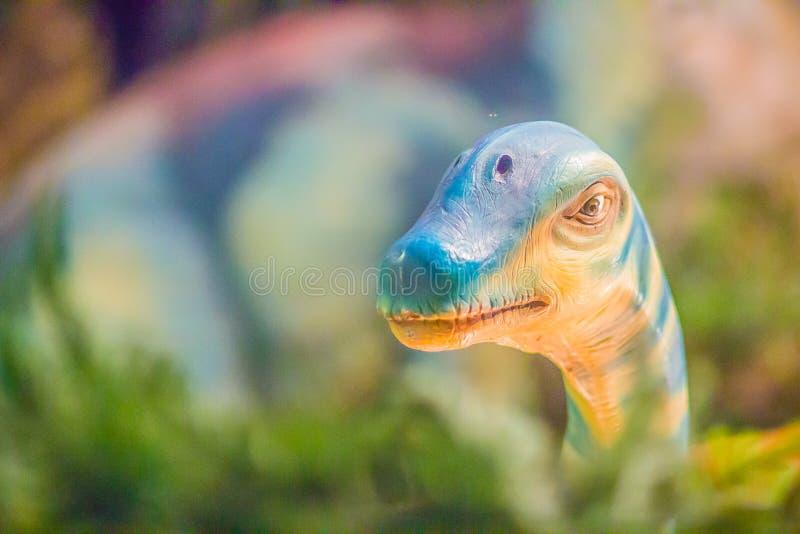 Милая модель sirindhornae Phuwiangosaurus на mus публики Бангкока стоковое фото rf