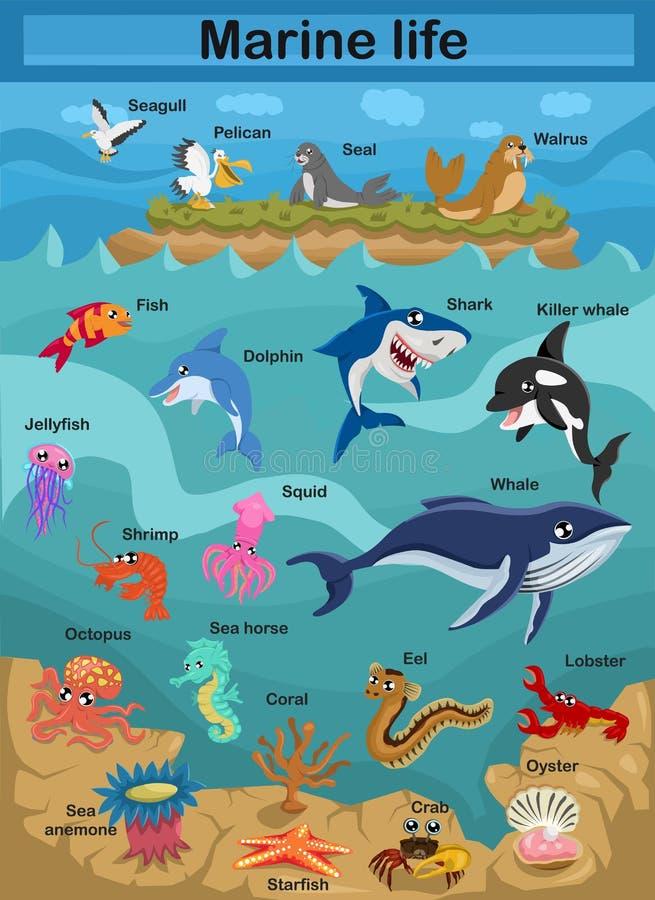 Милая морская жизнь иллюстрации вектора мультфильма исследуя подводный мир для мира детей подводного иллюстрация вектора