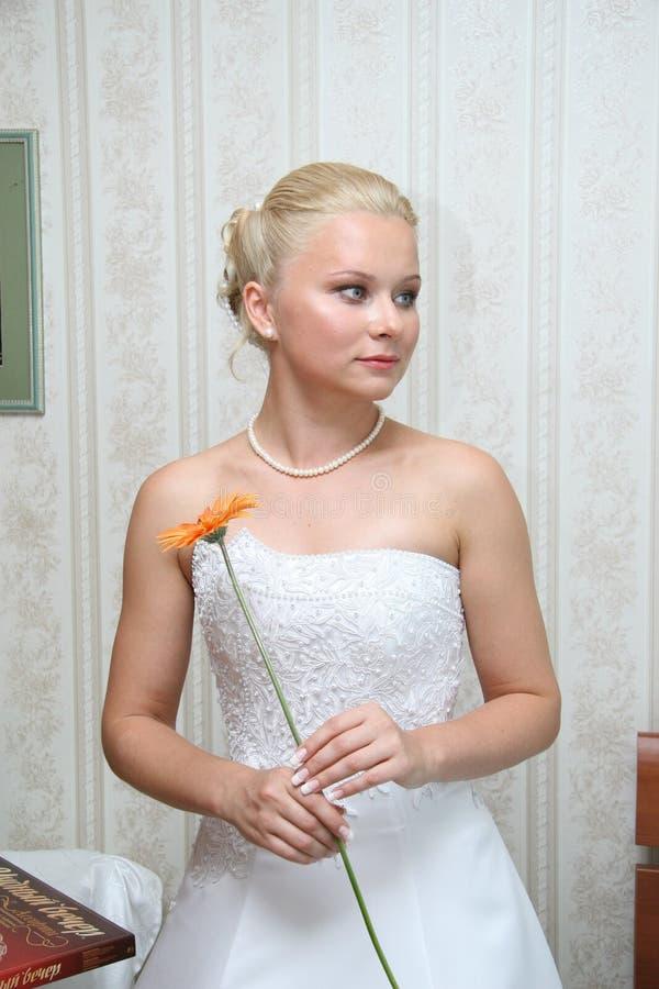 Милая невеста стоковое изображение