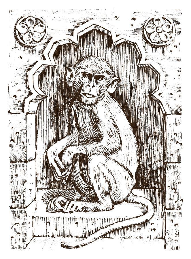 Милая обезьяна или примат года сбора винограда Нарисованная рука, выгравированное дикое животное символ африканца зоологии также  бесплатная иллюстрация