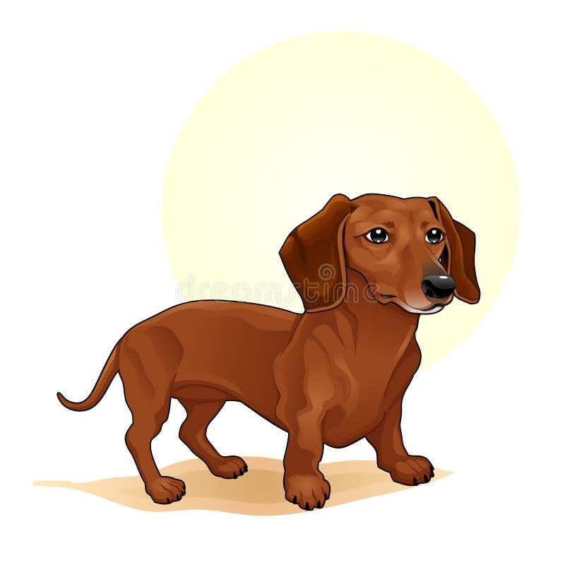 Милая покрашенная Брайном иллюстрация вектора собаки изумительная Милый шарж выслеживает иллюстрацию doggy хлебов характеров люби бесплатная иллюстрация