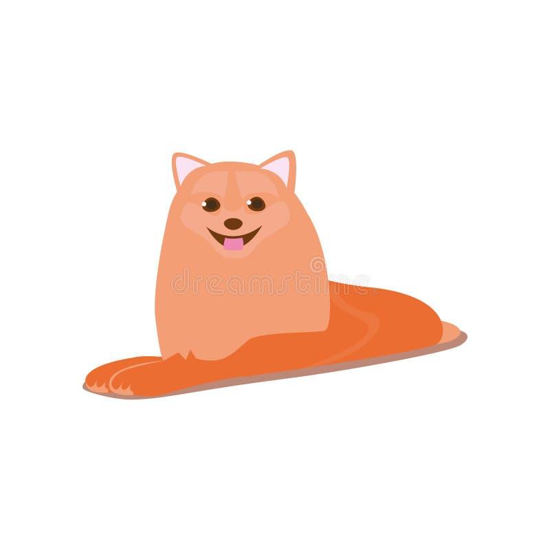 Милая счастливая усмехаясь собака шпица пребывание на поле комнаты иллюстрация штока