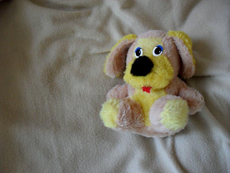Милая съемка игрушки щенка стоковые изображения
