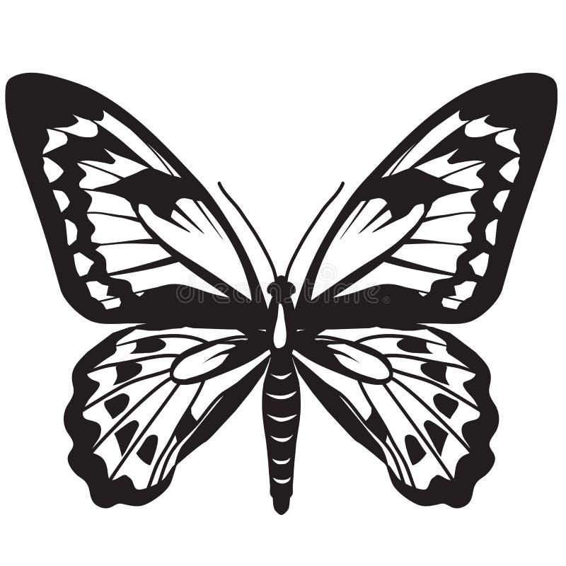 Милая черная иллюстрация вектора бабочки стоковые изображения