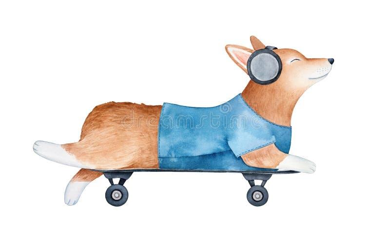 Милое красное катание щенка corgi валийца Пембрука на скейтборде и слушать к музыке с большими черными наушниками бесплатная иллюстрация