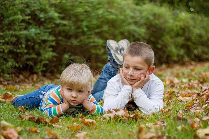 Милые дети маленького брата лежа на зеленой траве в парке стоковое фото rf