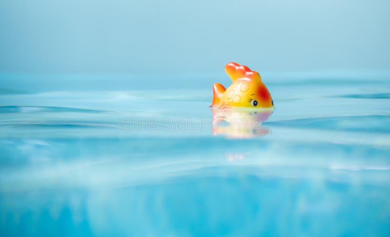 картинки рыба в бассейне ось