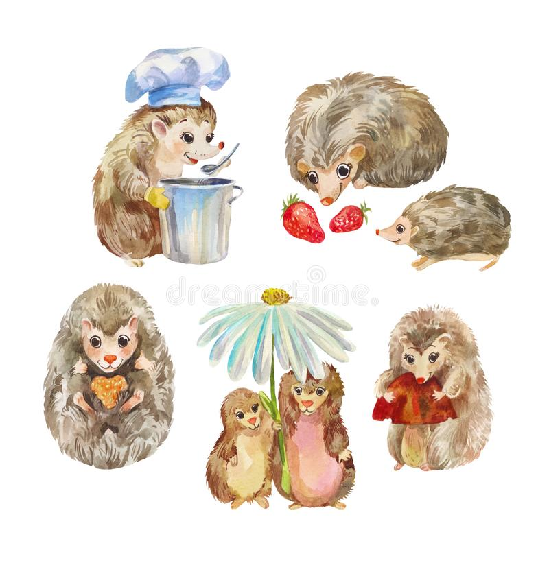 Милые и смешные ежи Животные мультфильма, характеры акварели изолированные на белизне бесплатная иллюстрация