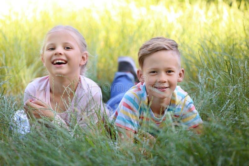 Милые маленькие дети лежа на зеленой траве outdoors стоковое изображение