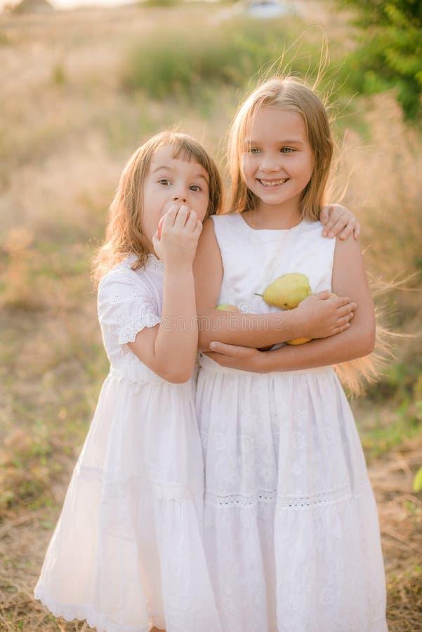 Милые маленькие сестры в белых платьях смеются смеяться с яблоками и грушами в сельской местности на день осени стоковая фотография rf