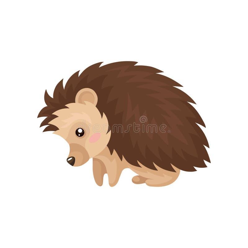 Милый еж, прекрасная колючая животная иллюстрация вектора персонажа из мультфильма на белой предпосылке иллюстрация вектора