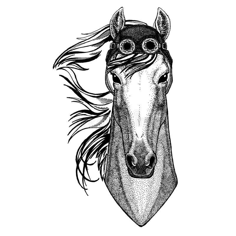 Милый животный нося мотоцикл, лошадь шлема авиатора, hoss, рыцарь, конь, изображение courser нарисованное рукой для татуировки, э иллюстрация вектора