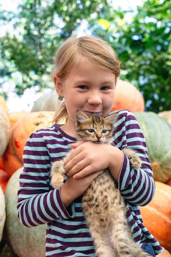 милый котенок девушки немногая стоковые фото