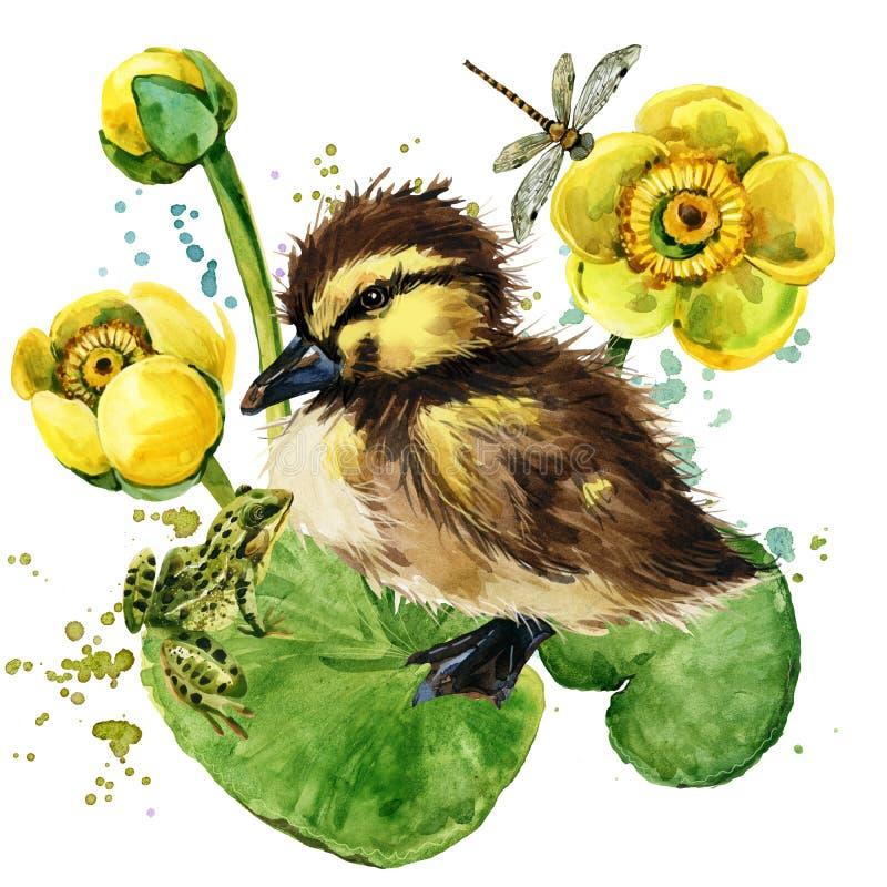 Милый маленький утенок предпосылка акварели лилии желтой воды иллюстрация вектора