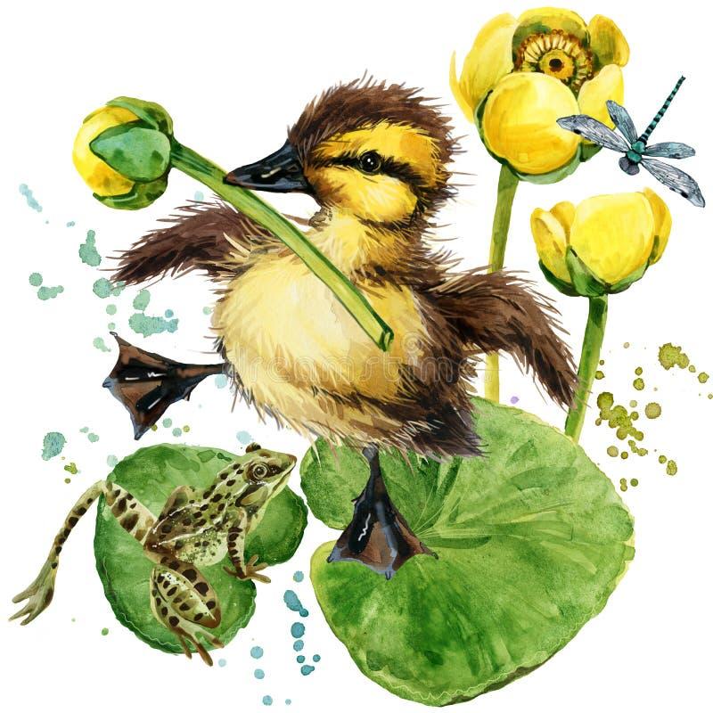 Милый маленький утенок предпосылка акварели лилии желтой воды бесплатная иллюстрация