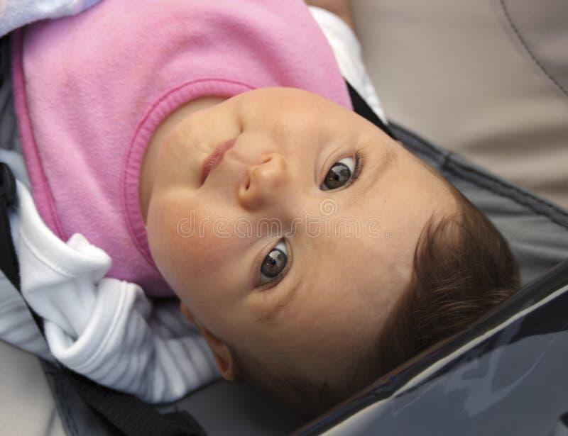 милый младенец девушки смотря вверх стоковое изображение